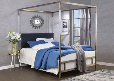 Raegan Gray Velvet & Antique Brass Queen Bed,Acme