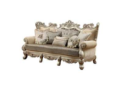 Ranita Fabric & Champagne Sofa,Acme