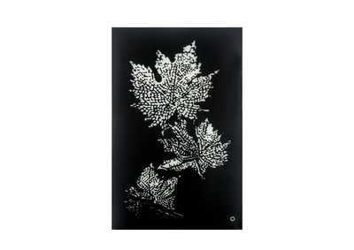 Image for Hadrias Smoky Glass Wall Art (LED)