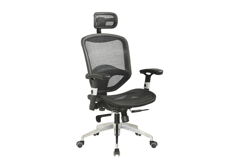 Image for Multi Adjustable Computer Chair