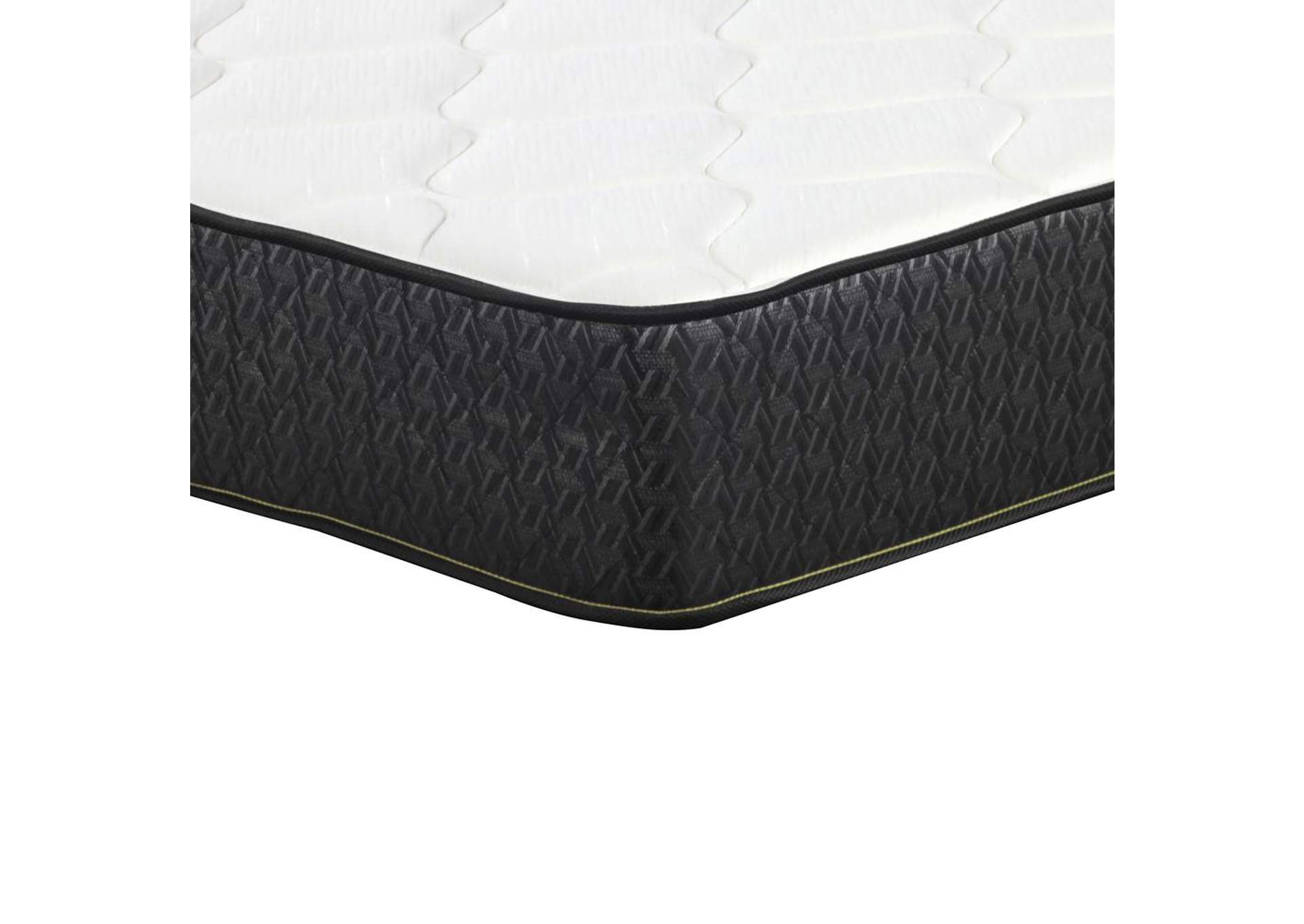 "Santa Barbara Iii Mattress Gallery 6"" Twin Mattress,Coaster Furniture"