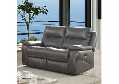 Lila Gray Power-Assist Loveseat,Furniture of America
