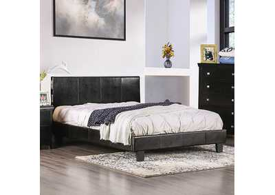 Image for Evans Espresso Twin Bed