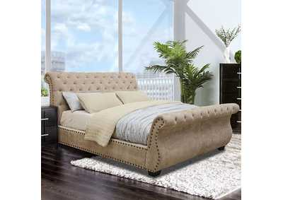 Image for Noemi Mocha Queen Upholstered Sleigh Bed
