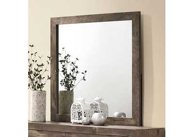 Image for Larissa Mirror