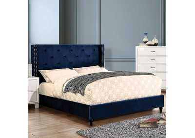 Anabelle Navy Queen Bed