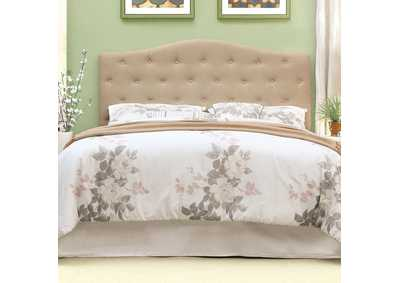 Alipaz Ivory Queen Headboard